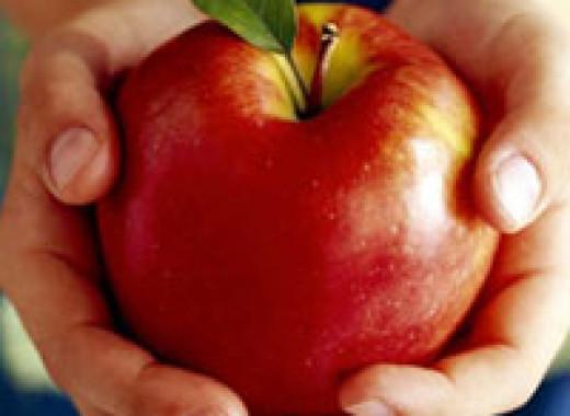 Загадки здорового питания