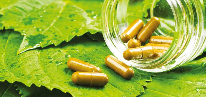 Травы и лекарства: вместе или врозь?