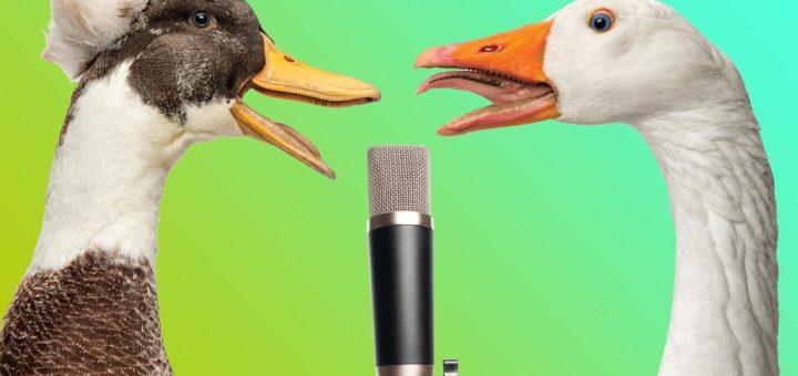 Неубедительный голос