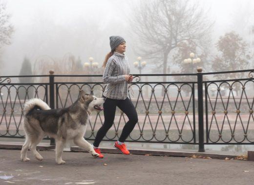 Как выбрать обувь для фитнеса, бега и силовой тренировки